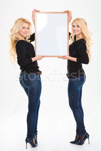 Mooie vrolijk zusters tweelingen boord geïsoleerd Stockfoto © deandrobot