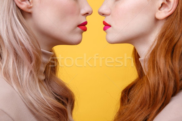 Cropped image of young two ladies with bright makeup lips Stock photo © deandrobot