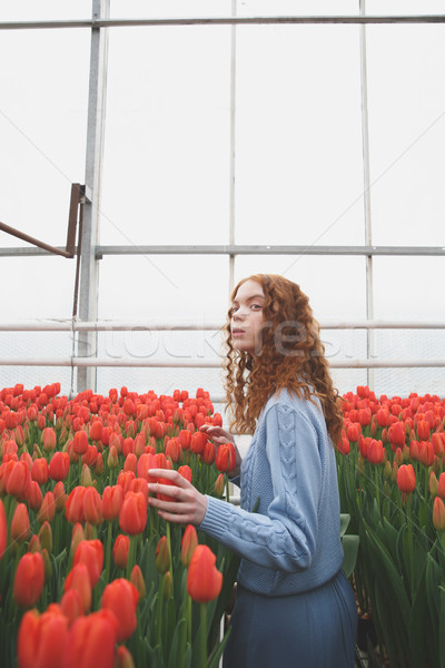 Girl looking up in orangery Stock photo © deandrobot