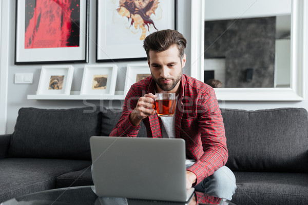 Concentrated young bearded man using laptop computer. Stock photo © deandrobot
