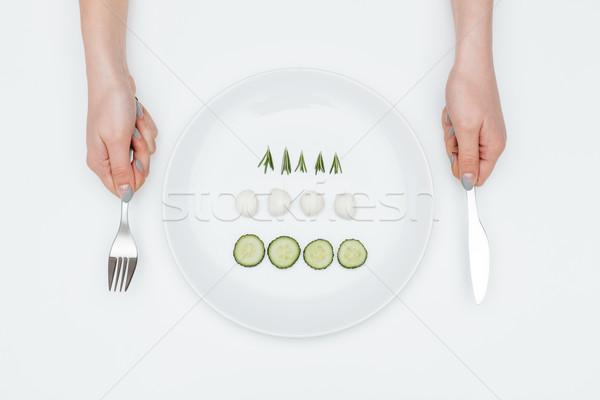 Felső kilátás tányér uborka mozzarella gyógynövények Stock fotó © deandrobot