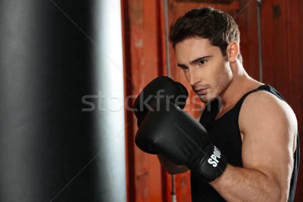 Genç konsantre boksör eğitim spor salonu resim Stok fotoğraf © deandrobot