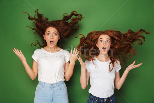 Portrait of two astonished young redhead girls Stock photo © deandrobot