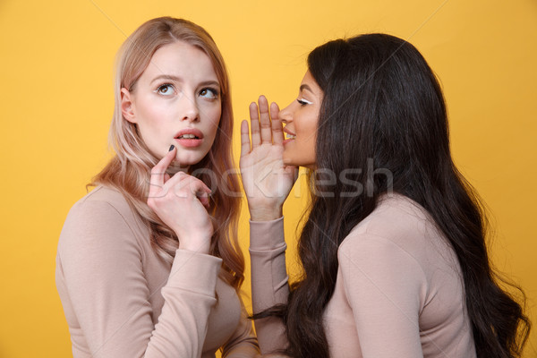 Concentrated young two ladies talking with each other. Stock photo © deandrobot