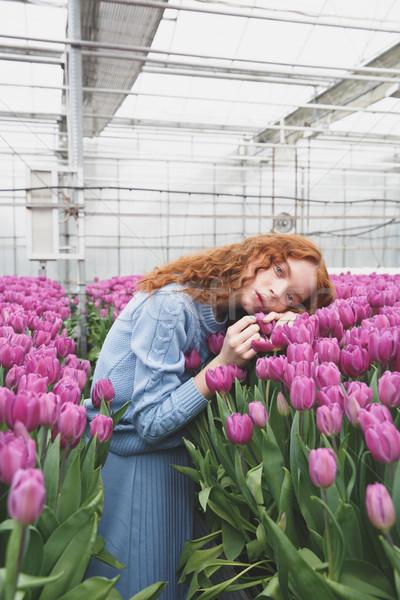 Girl lying on tulips Stock photo © deandrobot