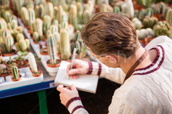 Male gardener making notes about condition of cactuses Stock photo © deandrobot