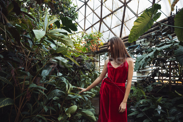 Stock photo: Woman in red dress looking away