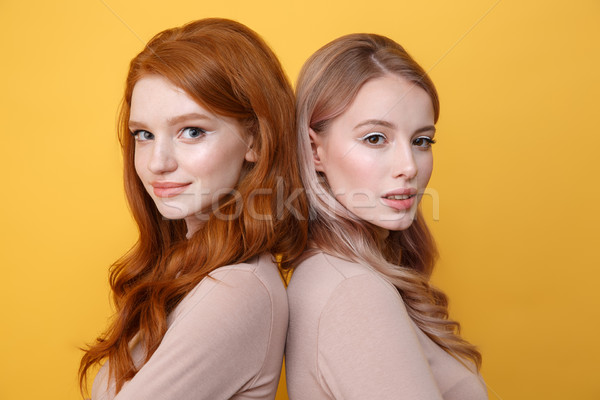 Happy young two ladies standing over yellow background Stock photo © deandrobot