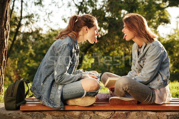 Two funny brunette girls sitting on wooden bench, showing tongue Stock photo © deandrobot
