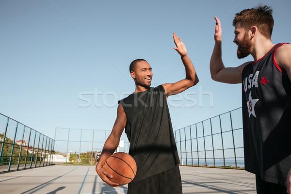 Pacsi játszik kosárlabda játszótér portré kettő Stock fotó © deandrobot