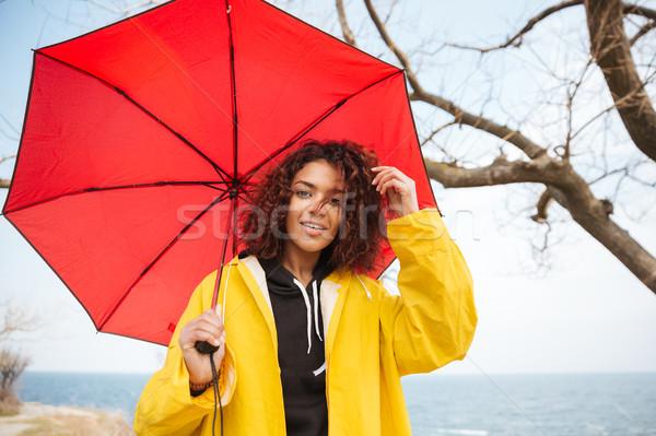 счастливым африканских молодые Lady Сток-фото © deandrobot