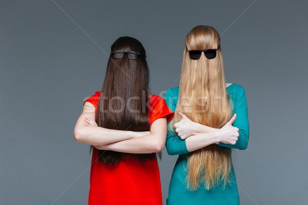 Twee grappig vrouwen gedekt gezicht lang haar Stockfoto © deandrobot