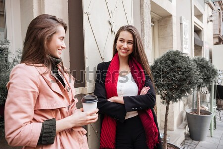 Beauty sisters in coats Stock photo © deandrobot
