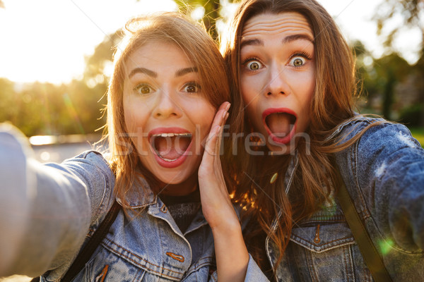 Portrait of two shocked screaming girls making funny faces Stock photo © deandrobot