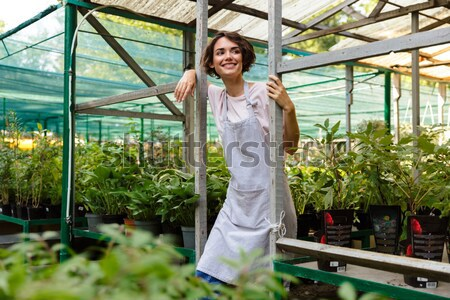 Cheerful woman standing near different kinds of ficus in orangery Stock photo © deandrobot