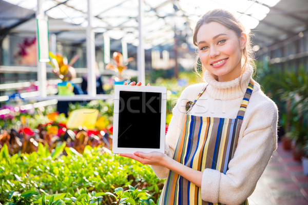 Happy woman gardener holding blank screen tablet in greenhouse Stock photo © deandrobot