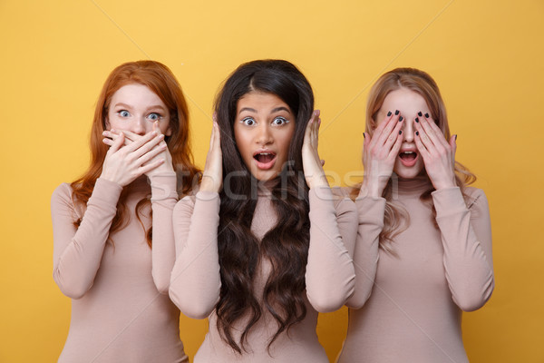 Three women covering their ears, eyes and mouth Stock photo © deandrobot