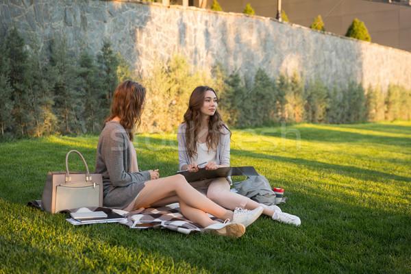 счастливым молодые две женщины сидят улице парка Сток-фото © deandrobot