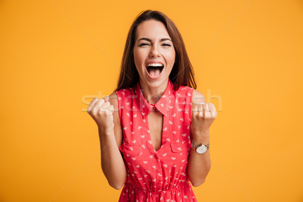 Mutlu başarılı genç kadın kaldırdı ellerini Stok fotoğraf © deandrobot