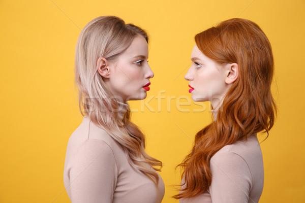 Ernstig twee dames heldere make lippen Stockfoto © deandrobot