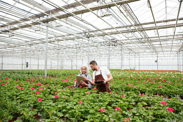 Couple of workers standing in garden near flowers and talking Stock photo © deandrobot