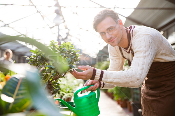 Handsome male gardener watering plants with water can  Stock photo © deandrobot