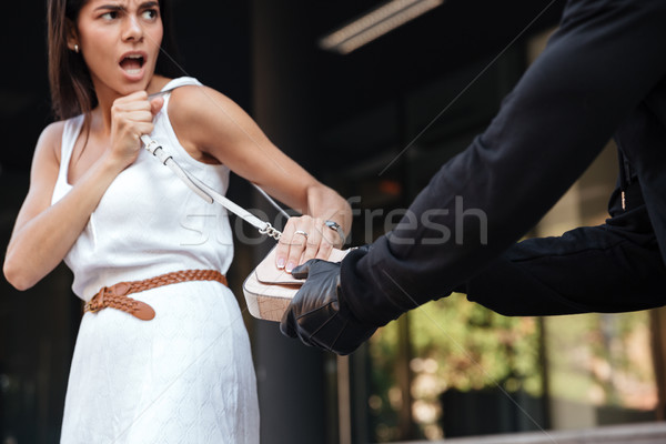 Woman screaming and fighting with robber whi stealing her bag Stock photo © deandrobot