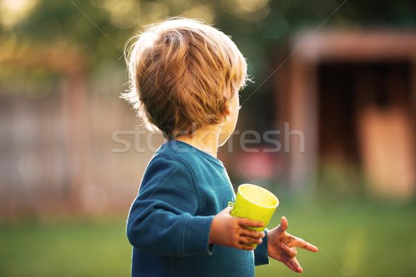Boy looking back Stock photo © deandrobot
