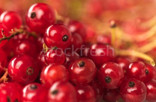Rood bes bessen macro foto Stockfoto © deandrobot