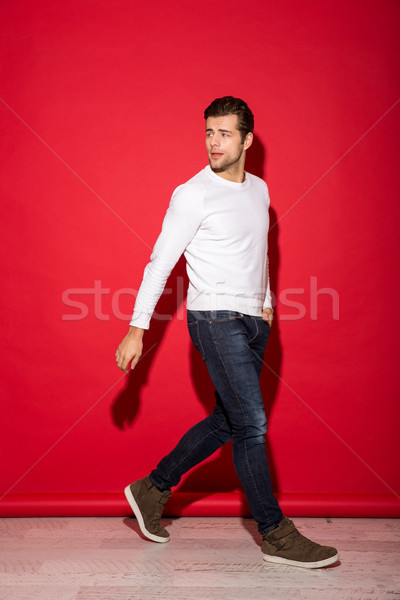 Full length image of mystery man in sweater walking Stock photo © deandrobot
