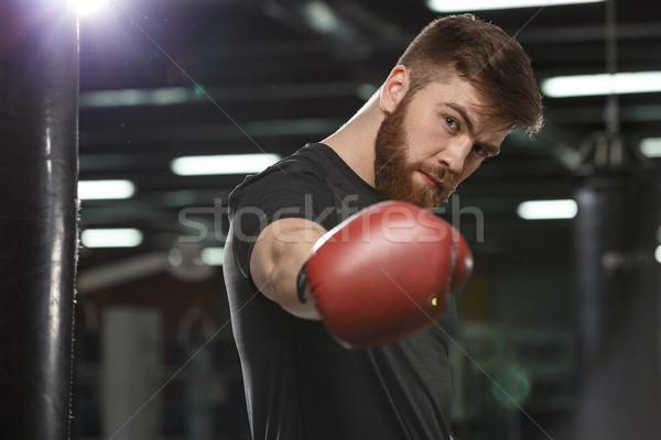 ハンサム 小さな 強い スポーツ 男 ボクサー ストックフォト © deandrobot
