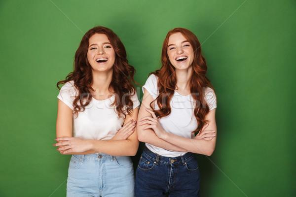 портрет два счастливым девочек 20-х годов имбирь Сток-фото © deandrobot
