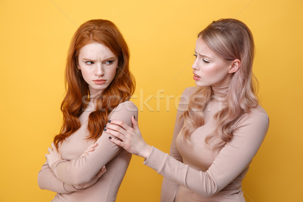 Angry offended redhead lady standing near blonde woman friend Stock photo © deandrobot