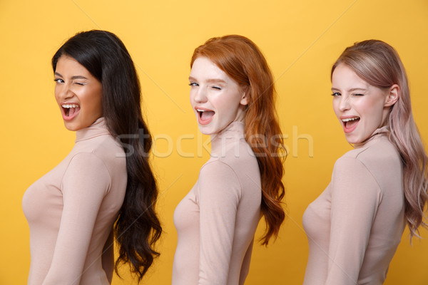 Side view image of young winking three ladies Stock photo © deandrobot