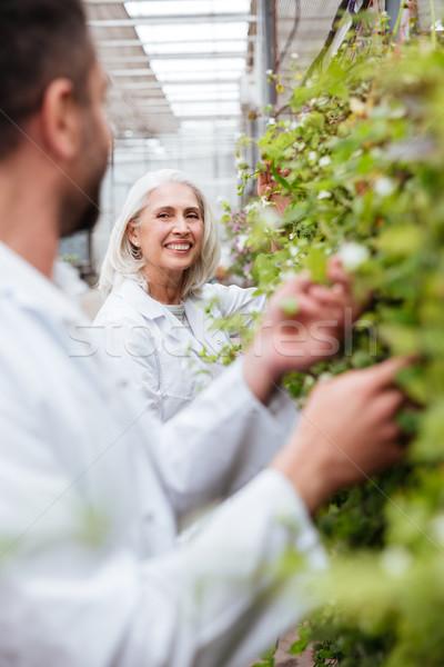 портрет счастливым женщину садовник глядя коллега Сток-фото © deandrobot