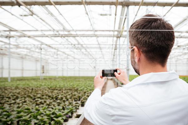 Hátulnézet férfi készít fotó növényzet kertész Stock fotó © deandrobot