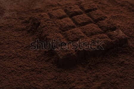 Close-up of a dark chocolate piece covered in powder Stock photo © deandrobot