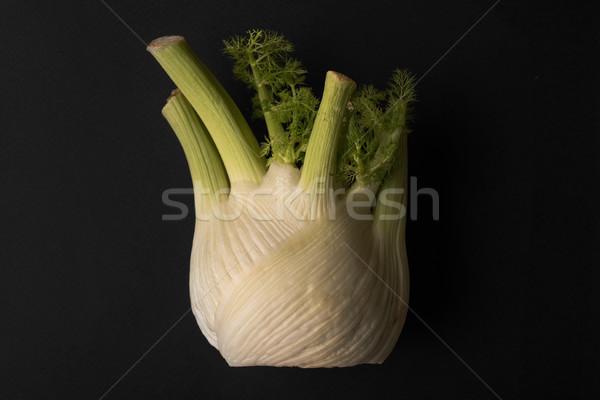 Salade ail isolé noir groupe Photo stock © deandrobot