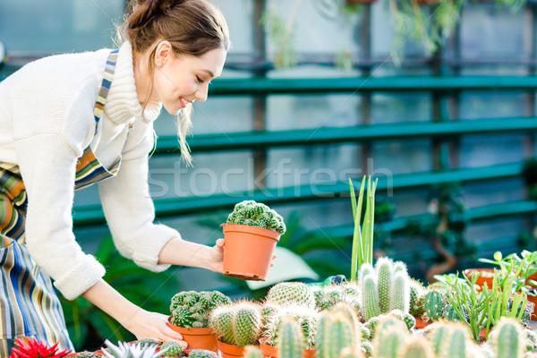 幸せ かわいい 小さな 女性 植木屋 ストックフォト © deandrobot