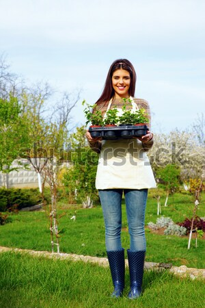 Vrouw werken schop tuin outdoor boom Stockfoto © deandrobot