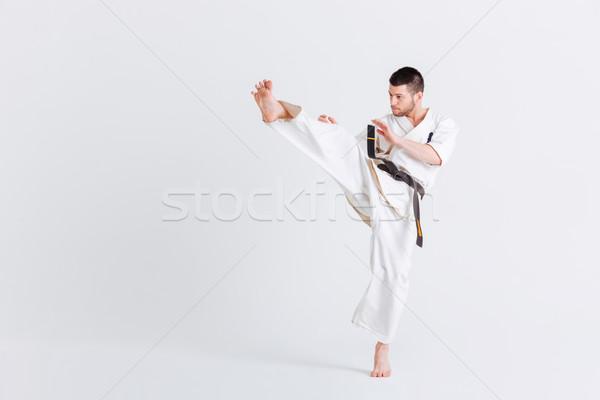 Férfi kimonó harcol izolált fehér sport Stock fotó © deandrobot