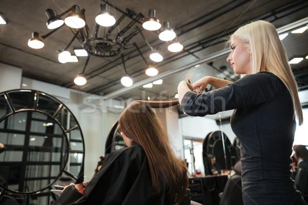 ヘアドレッサー ヘアスタイル クライアント 美容院 美しい 女性 ストックフォト © deandrobot