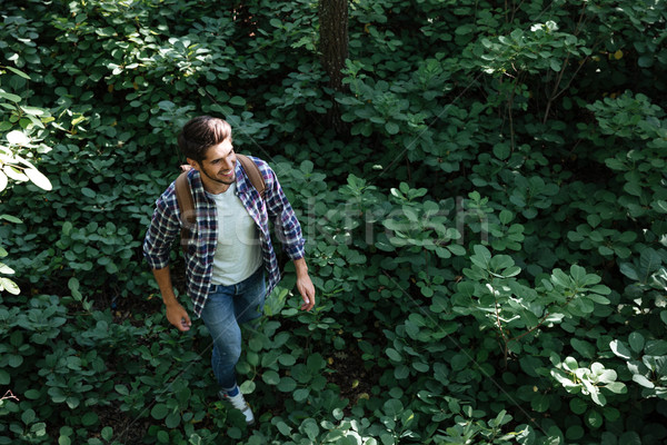 From above image of man in forest Stock photo © deandrobot