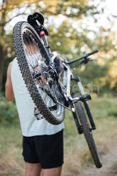 Hátulnézet férfi bicikli erdő út tart Stock fotó © deandrobot
