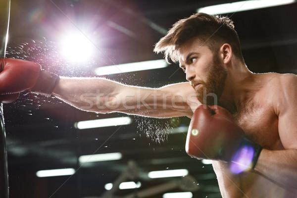 Koncentrált fiatal erős sportok férfi boxoló Stock fotó © deandrobot