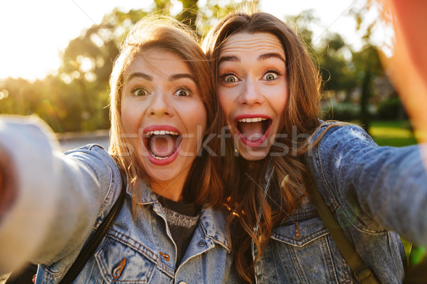 Portrait of two excited young girls making funny faces Stock photo © deandrobot