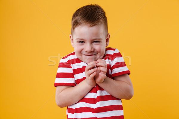 Ritratto intelligente piccolo ragazzo up qualcosa Foto d'archivio © deandrobot