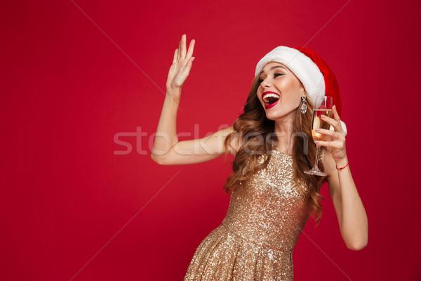 Retrato sonriendo mujer atractiva Navidad sombrero vestido Foto stock © deandrobot