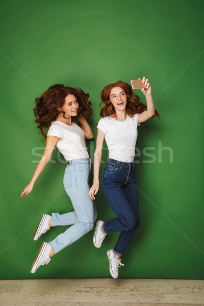 Full length portrait of two cheerful young redhead girls Stock photo © deandrobot