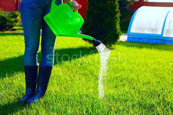 Stock photo: Woman (only legs) watering lawn with water pot